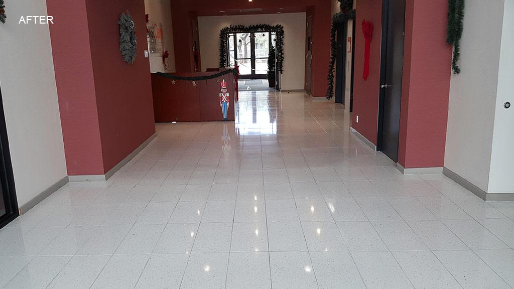 Terrazzo Floor Polishing Austin Tx Gold Standard Floor Care